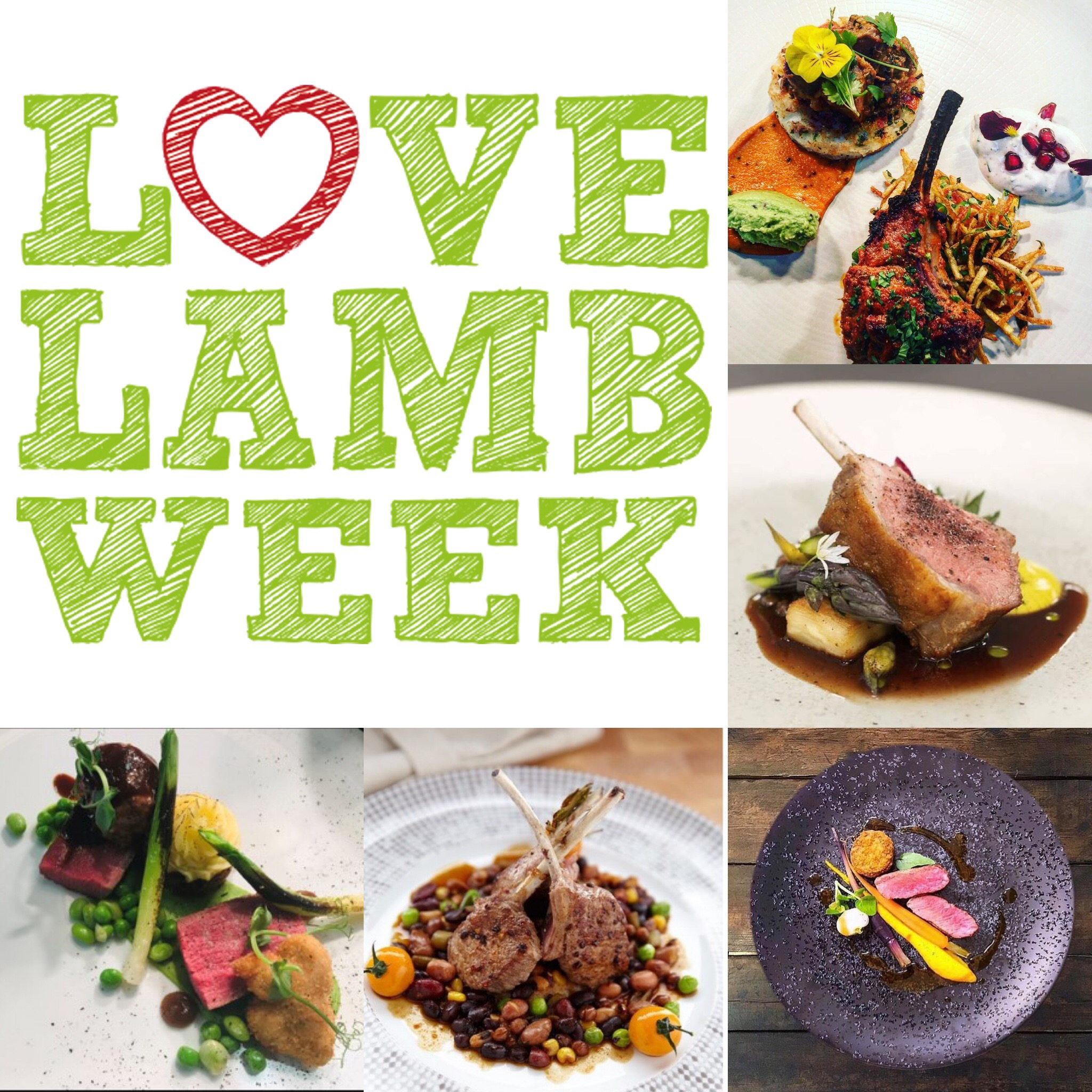 Celebrating the best of British lamb as part of #LoveLambWeek